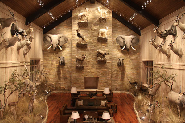 Conroe Taxidermy 360 Tour Conroetaxidermy