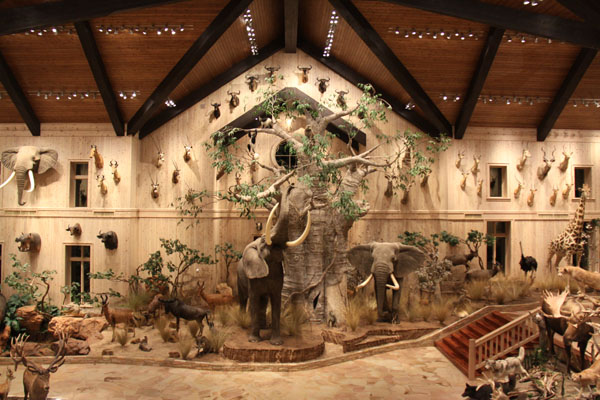 Conroe taxidermy 360 tour conroetaxidermy for Big game room