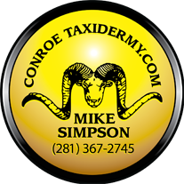 World Class Taxidermist - Mike Simpson - Conroe, Texas - Quality Trophy Mounting, Houston, Spring
